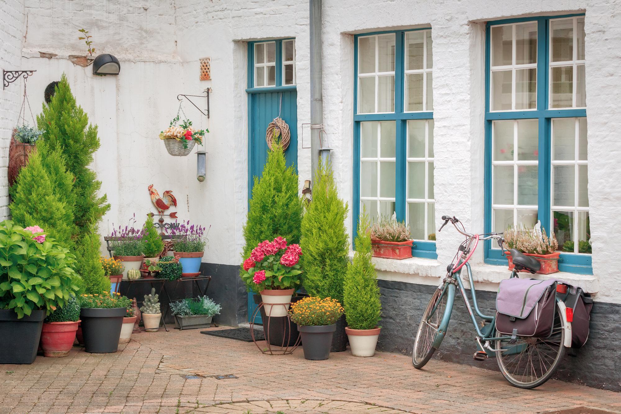 Krukker til haven – Gode tips – Min flotte have
