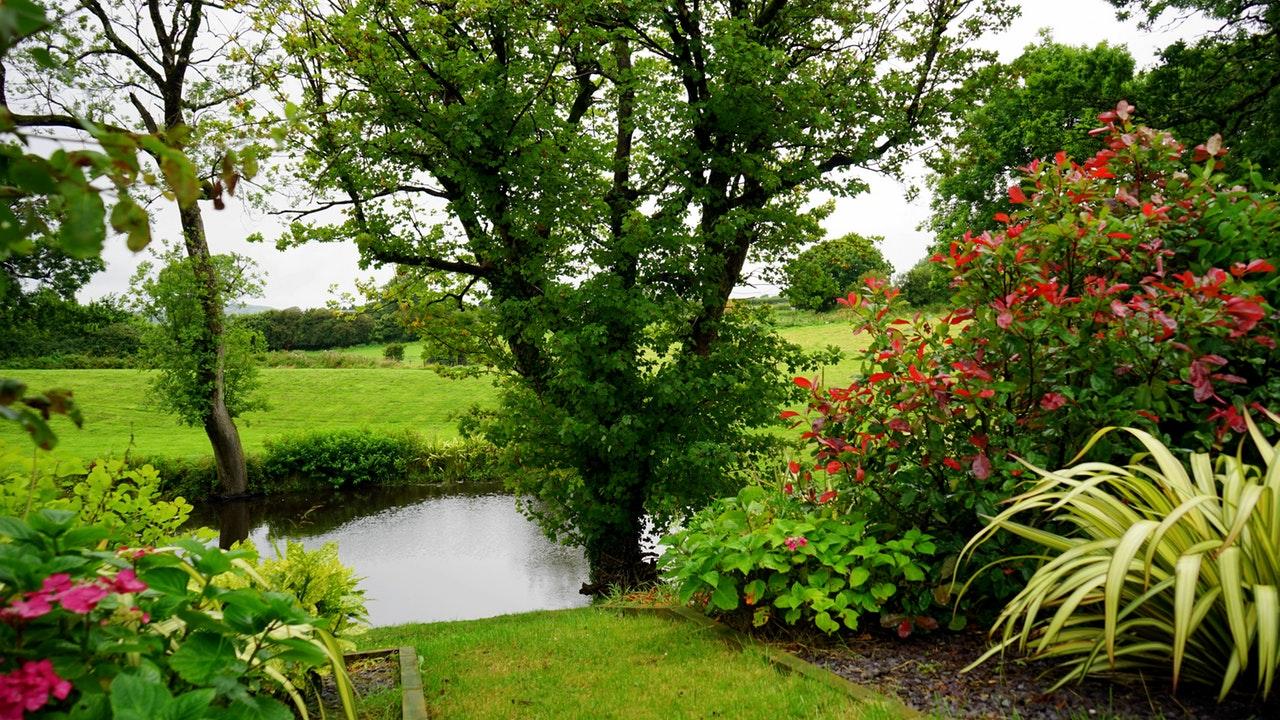 Find et lækkert hus med have at leje i Sæby