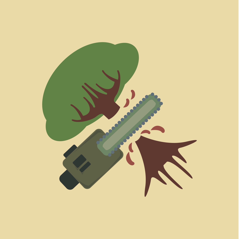 Opskriften på sikker og effektiv træfældning