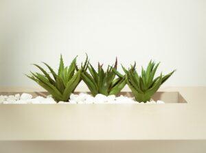 Indret din lille have med plantekasser